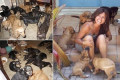 PICTURED: Bahamas resident shelters 97 stray and sick dogs in her home as Hurricane Dorian strikes