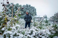 Montana snow: Up to 4 feet of snow falls a week after summer's end