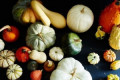 The Ultimate Guide to Winter Squashes (For Your Front Stoop & Your Stew!)