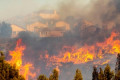 Another utility-sparked wildfire? SoCal Edison alerts state regulators it had malfunction at start of Saddleridge Fire