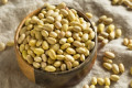 Mayocoba Beans Are the Pantry Staple You Need for Winter—Here's Why