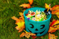 Mom's Facebook Post Goes Viral, Encourages Children With Autism To Use Blue Trick-Or-Treat Buckets On Halloween