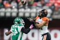 Lions 19, Roughriders 27: Lions' pride not enough to stop Riders