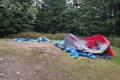 B.C. scout group's tents destroyed by black bear while camping on Mount Seymour