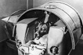 Laika the Dog: These Are All the Animals That Have Been Launched Into Space