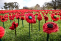Remembrance Day 'binds us in the face of adversity'