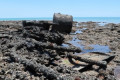 SS Brisbane shipwreck captured in detail by Northern Territory researchers