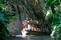 Disney World Jungle Cruise Boat Sinks With Passengers On Board in Mid-Ride Mishap