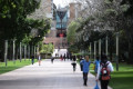 Australian universities start wiping fail grades as students plea for amnesty