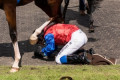 fright at the derby: jockey falls off his horse at the award ceremony