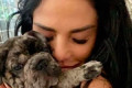 Katie Price 'devastated' as Princess' pet puppy Rolo dies in tragic accident at home