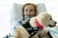 New hope after a horror accident: Paralyzed girl (6) gets to know her future assistance dog