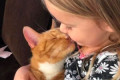 Touching scene: four-year-old sings a dying cat farewell song